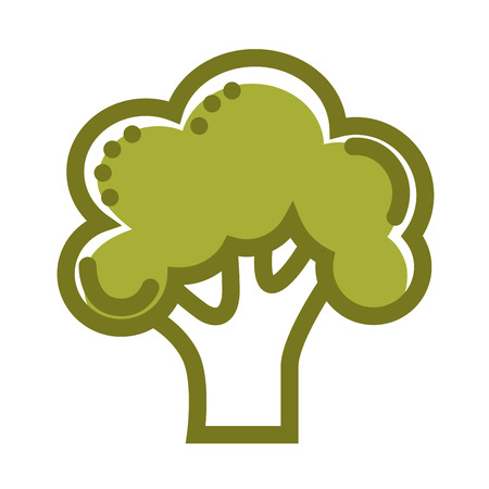 Green organic fresh broccoli isolated flat cartoon illustration