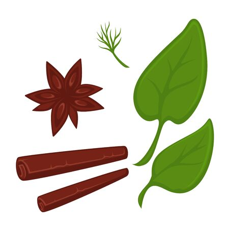 Cinnamon in tube and star shapes and fresh greenery Illustration