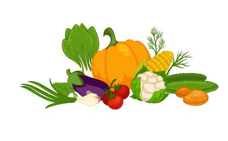 Fresh organic vegetables in big heap isolated illustration for nutrition celebration