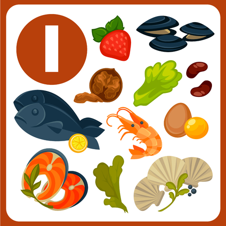 Products with high iodine content vector illustrations. Tasty oysters, red fish, king shrimps, egg yolks, fresh seaweed, nutritious walnut, sweet strawberry, lettuce leaves and healthy beans.