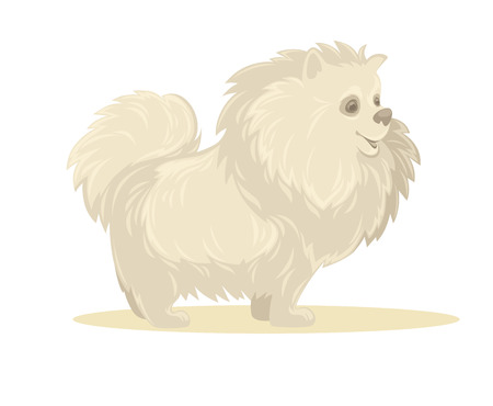 miniature breed: Vector illustration of cartoon dog. Isolated on white. Vectores