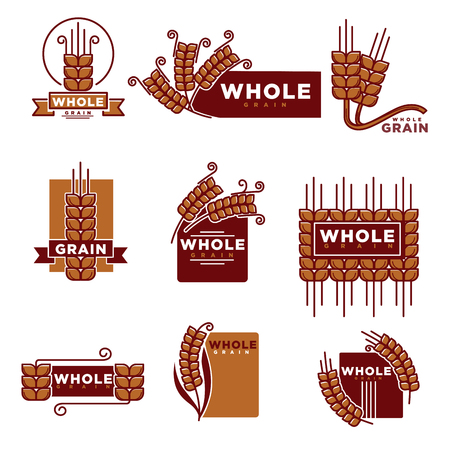 spelt: Cereal and whole grain products logo templates set for bakery shop or baking products muesli or organic porridge and flour package label design. Vector wheat, rye ears or buckwheat and oat or barley