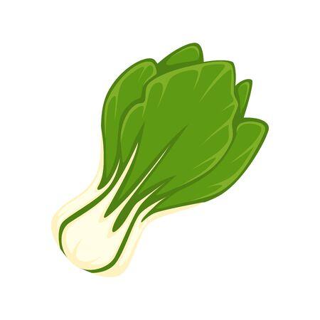 Fresh green salad Illustration