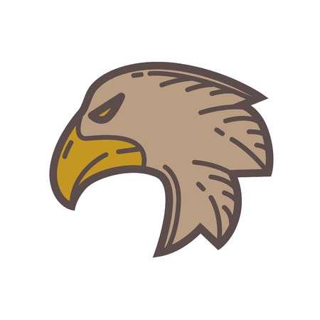Head of eagle bird