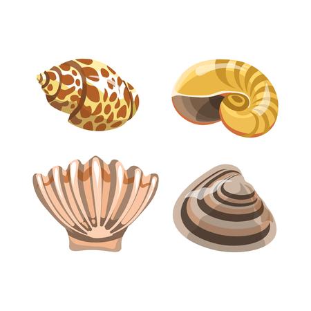 Amazing shiny curved sea shells isolated illustrations set