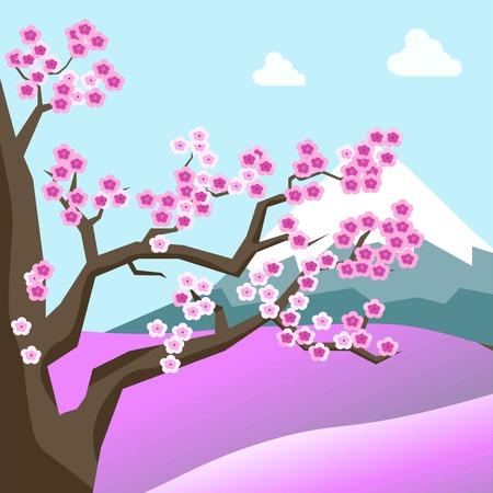 China spring landscape with sakura blossom on tree