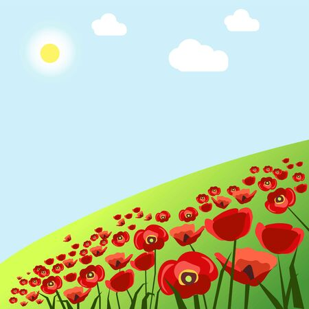 Green field with red poppies under hot summer sun