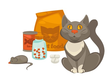 Pet vet or animal veterinary doctor or clinic flat icon of cat and treatment pills, dietary dry and meat food, mouse toy and vitamin bottle. Vector zoo veterinarian infographic design template