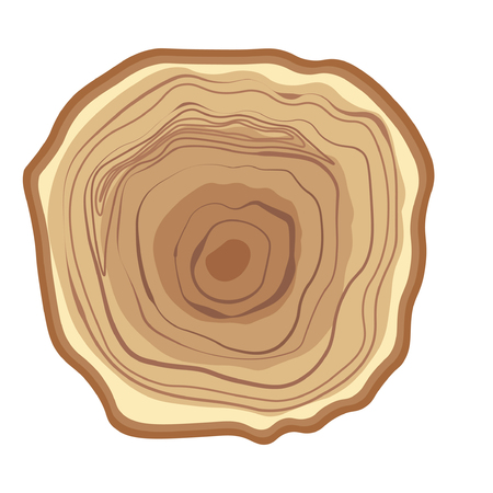 annual ring annual ring: Tree wood year ring. Vector isolated icon Illustration