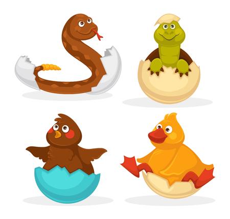 Les bébés animaux éclosent des oeufs ou dessinent des animaux d'incubation. Icônes de jouet drôle isolé vecteur plat hochet serpent, bébé crocodile, poussin ou oiseau de canard. Jeu de caractères animaux animaux