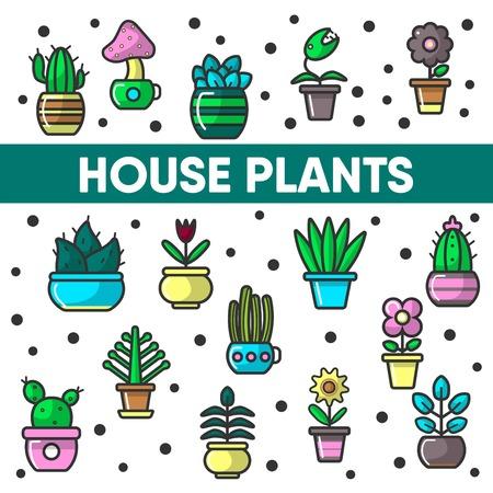 House plants in flower pots vector cactus flowerpot decoration icons abckground