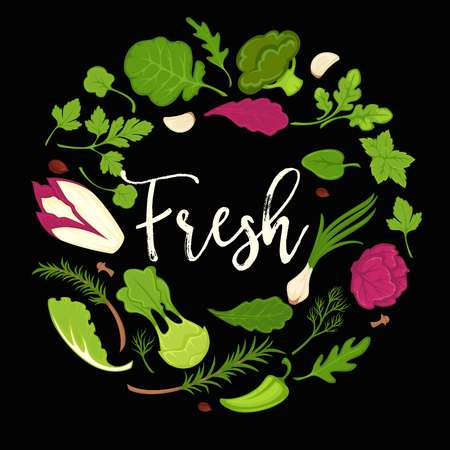 Lettuce salads fresh leafy vegetables vector healthy diet vegetarian poster Illustration