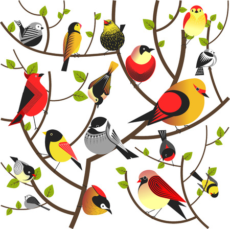 Birds sitting on tree branch vector flat different bird colorful background