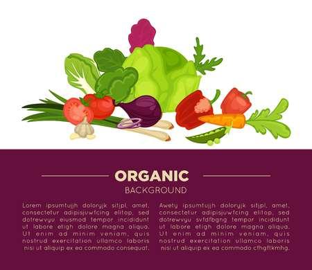 berenjena: Organic food poster background of fresh vegetables vector veggies