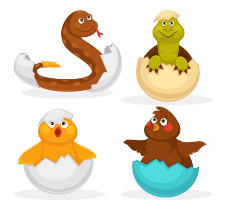 Les bébés animaux éclosent des oeufs ou dessinent des animaux d'incubation. Icônes de jouet drôle vecteur plat isolé