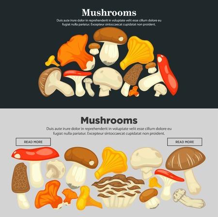 Funghi di tutte le specie sul manifesto promozionale di Internet