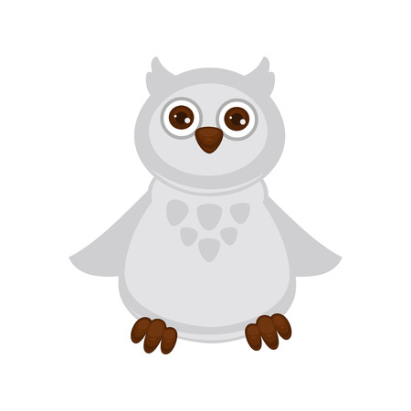 Owl baby with big brown eyes and white plumage
