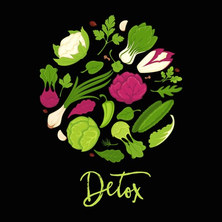 Vegetable salads detox diet poster. Vector healthy vegetarian dietary herbs and veggies of fresh green salad leaf of arugula and kohlrabi cabbage, onion or spinach and farm grown cucumber