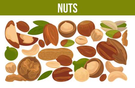 Delicious nutritious nuts advertisement banner vector illustration set