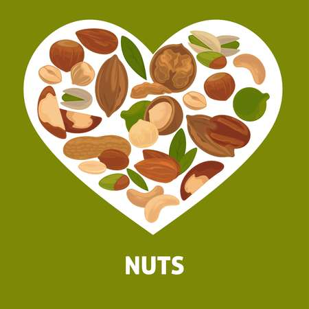 Delicious nutritious nuts advertisement banner vector illustration