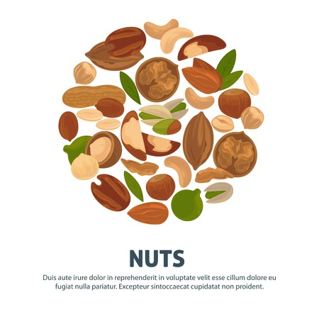 Delicious nutritious nuts advertisement banner with italic sign inside big circle isolated vector illustration 일러스트