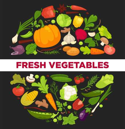 Vegetables healthy food poster of organic veggie, fresh healthy cabbage and vegetarian food.