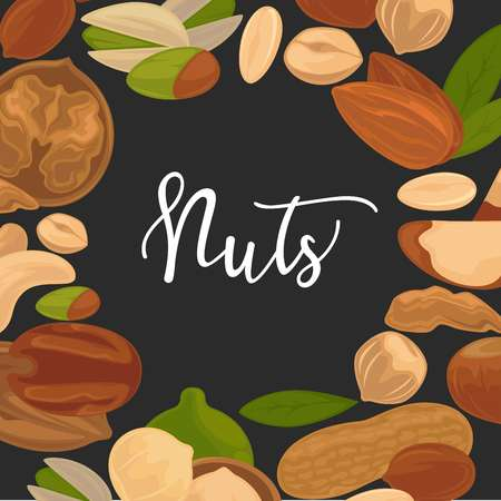 Delicious nutritious nuts advertisement banner with italic sign inside big circle isolated vector illustration Illustration