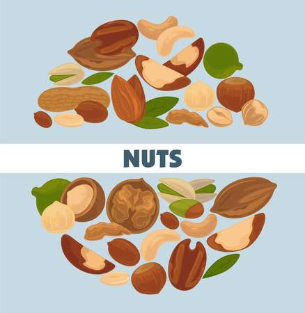 Delicious nutritious nuts advertisement banner with italic sign inside big circle isolated vector illustration.