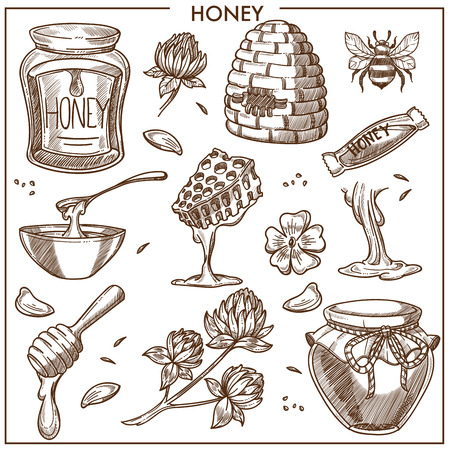 Sweet honey from apiary isolated cartoon illustrations set.