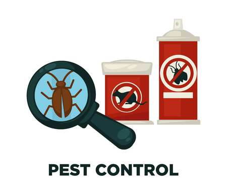 Harmful insects extermination devices and means isolated cartoon  illustrations set on white background.