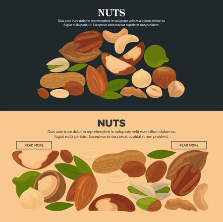 Healthy nutritious nuts promotional templates set vector illustration