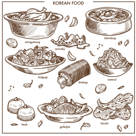 Korean cuisine traditional dishes sketch icons. Vector set of samgyetang chicken with sannakji and kimchi cabbage, spicy ramen noodles soup or bulgogi and kimpab with pastry for Korea restaurant.