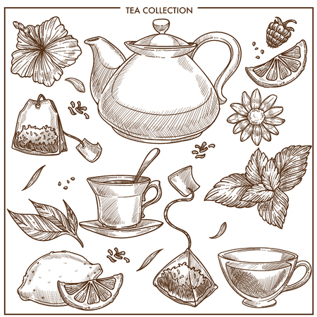 Tea collection vector sketch icons of cups, teapot and teabags or herbal flavorings