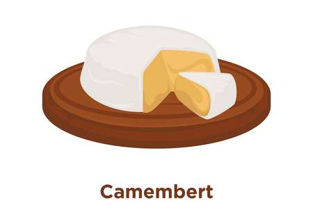 Head of delicious Camembert with cut triangular piece