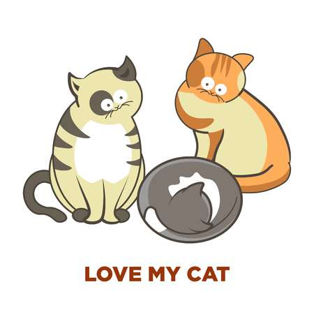 Cute cats pets or kittens playing or posing vector flat icons