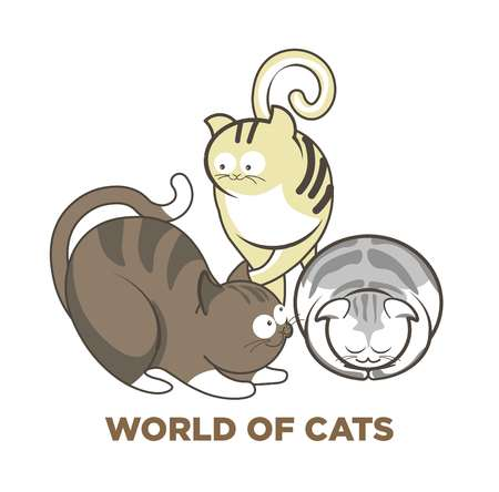Cute cats or kitten pets playing or posing vector flat icons