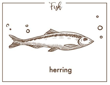 Icona di vettore di pesce schizzo di aringhe