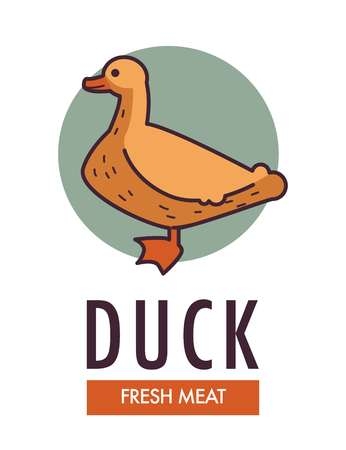 Duck fresh meat commercial logo with domestic bird Vector illustration.