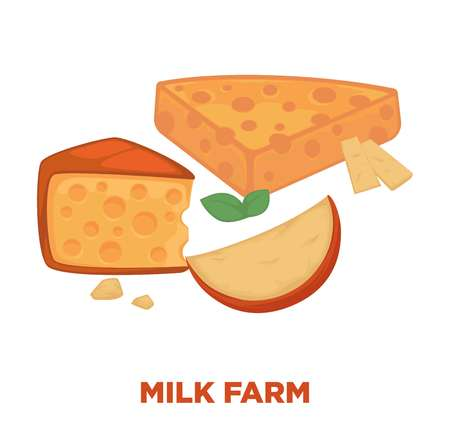 Milk farm promotional poster with delicious cheese segments Illustration