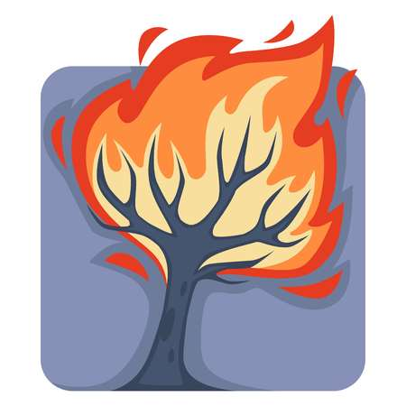 Dangerous wild fire that burns down tall tree. Natural disaster caused by heat or human carelessness. Plant in hot flame isolated cartoon vector illustration of square shape on white background.