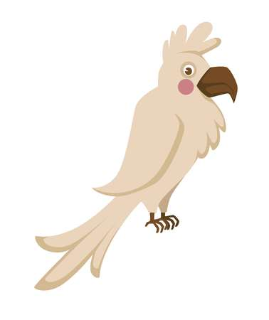Domestic albino parrot with big sharp beak and funny forelock Stock Photo