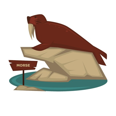 Morse zoo animal and wooden signboard vector cartoon icon for zoological park