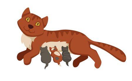 Pet cat feeding or nursing kittens babies vector cartoon icon