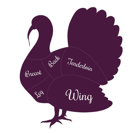 Turkey poultry fowl meat cuts butcher vector icon