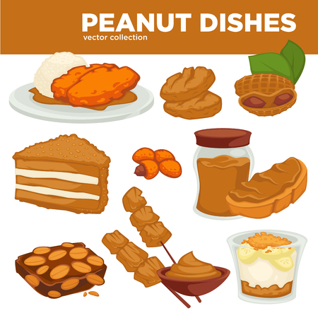 Peanut nut dishes vector food, drink and dessert