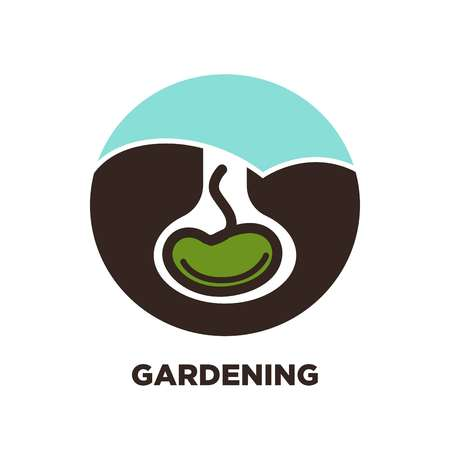 Gardening plant see in earth vector icon