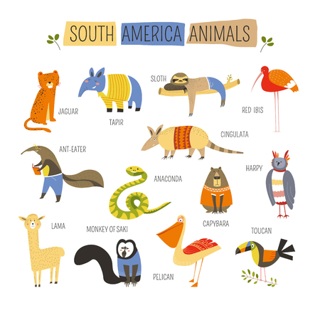 Cartoon South American animals and birds for kids design. Vector funny zoo of jaguar, tapir or sloth and cingulata or red ibis with harpy and capybara or toucan and pelican