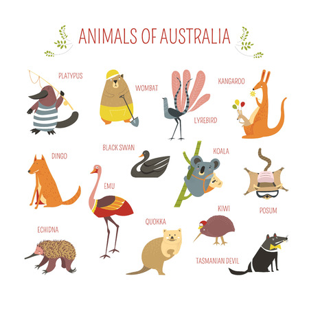 Cartoon Australian animals and birds for kids design. Vector funny zoo of kangaroo, koala or Emu ostrich and platypus, wombat or lyrebird and possum in clothes