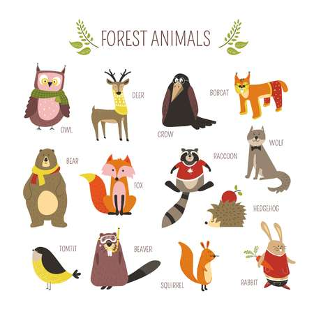 Cartoon forest animals and birds for kids design. Vector funny zoo of owl, deer or crow and bobcat fox with bear, raccoon or hedgehog and rabbit in clothes