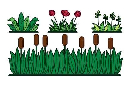 Grünes Gras und Blumenpflanzen oder Schilf für dekoratives Grün. Vektor-flache Cartoon-Blumengartenbüsche und grüne Hecken Vektorgrafik